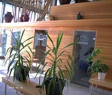 Sauna Aestas